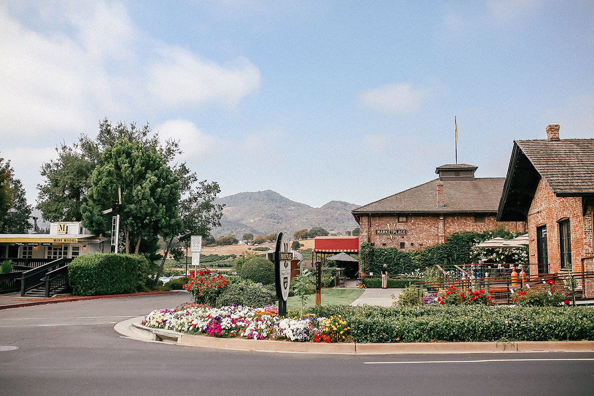 Napa Travel Guide | Hotel Yountville | First Timer's Guide to Yountville & Napa