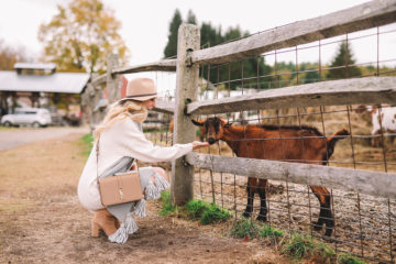 Ivory Sweater Dress Under $100 | Fall Trip to Vermont